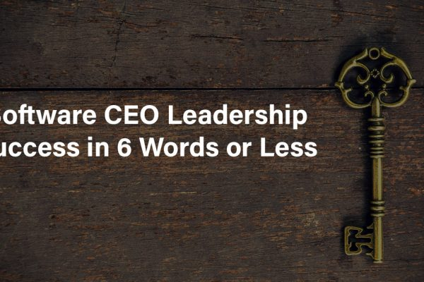 Software CEO Leadership Success in 6 Words or Less!